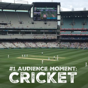 audience - cricket